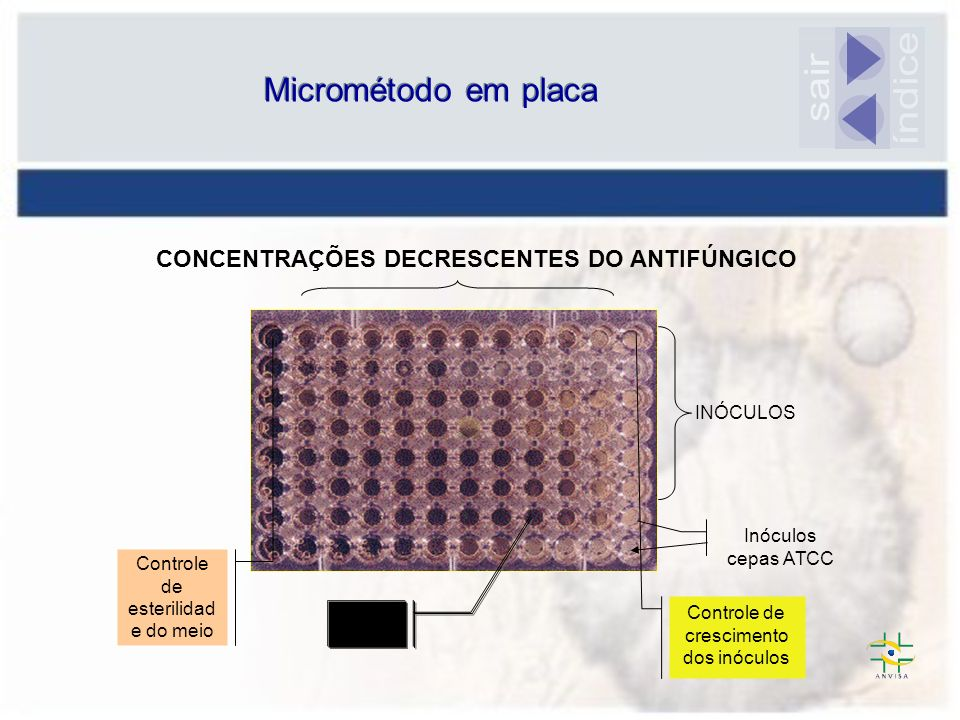 Micrométodo em placa MIC INÓCULOS CONCENTRAÇÕES DECRESCENTES DO ANTIFÚNGICO Controle de esterilidad e do meio Controle de crescimento dos inóculos Inó