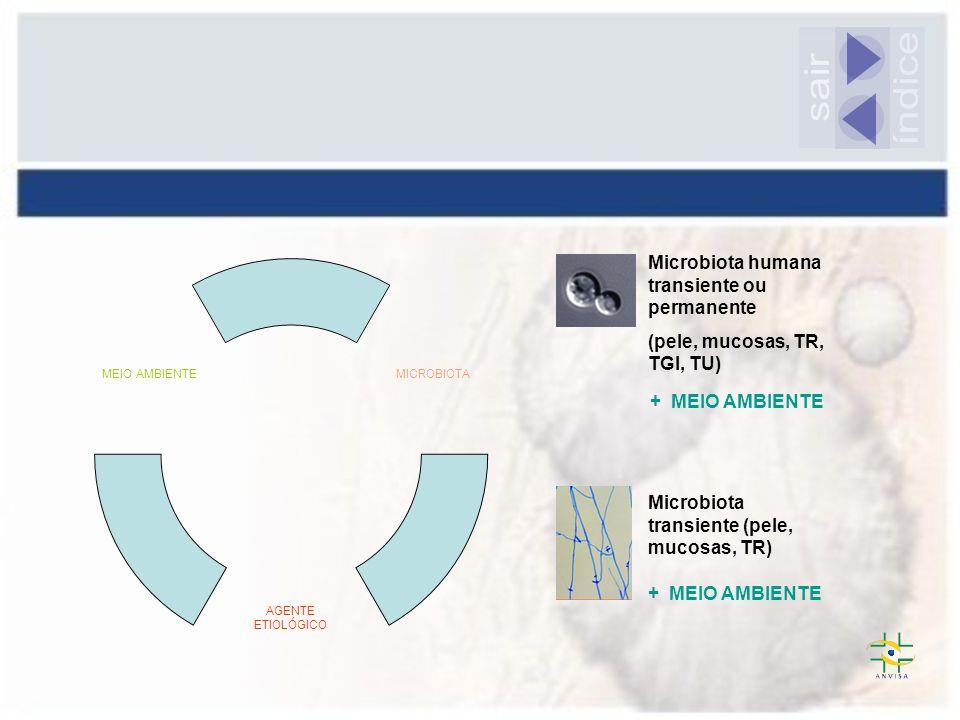 Microbiota humana transiente ou permanente (pele, mucosas, TR, TGI, TU) Microbiota transiente (pele, mucosas, TR) MICROBIOTA AGENTE ETIOLÓGICO MEIO AM