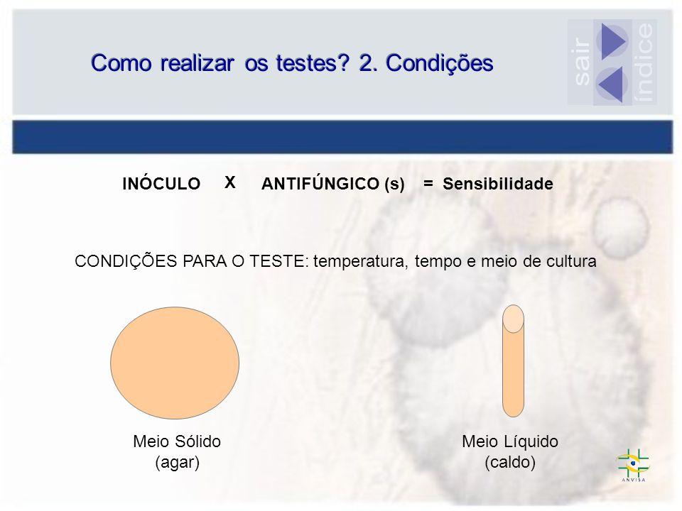 Como realizar os testes? 2. Condições INÓCULO ANTIFÚNGICO (s) X = Sensibilidade Meio Líquido (caldo) Meio Sólido (agar) CONDIÇÕES PARA O TESTE: temper