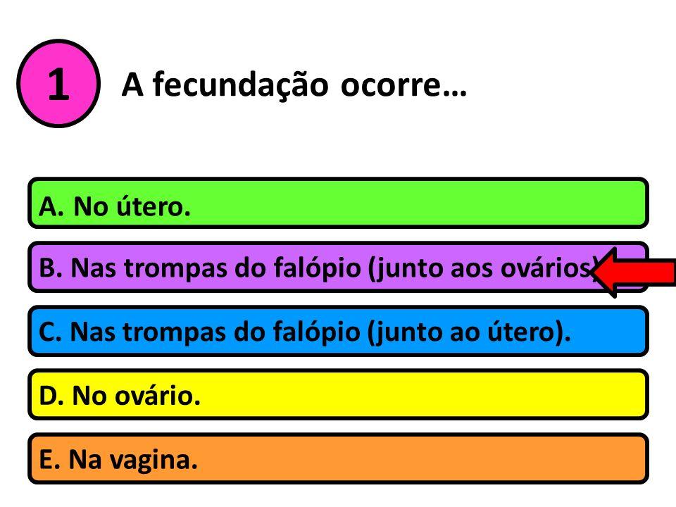 A fecundação ocorre… B. Nas trompas do falópio (junto aos ovários). A. No útero. C. Nas trompas do falópio (junto ao útero). D. No ovário. 1 E. Na vag
