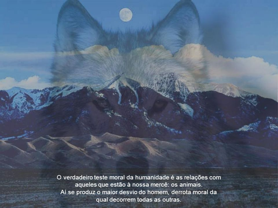 O verdadeiro teste moral da humanidade é as relações com aqueles que estão à nossa mercê: os animais.