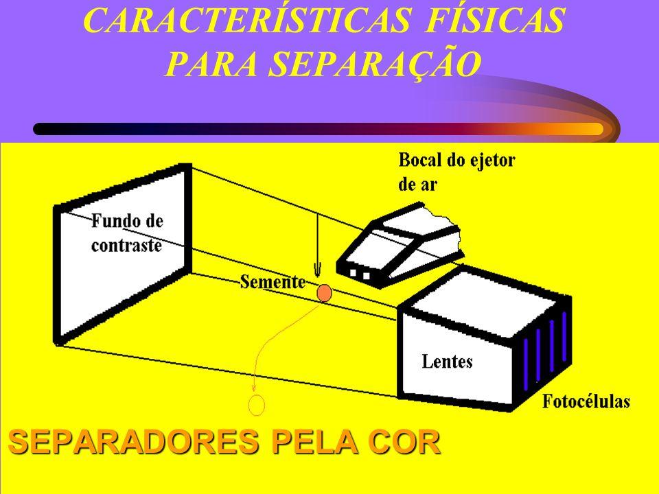 CARACTERÍSTICAS FÍSICAS PARA SEPARAÇÃO SEPARADORES PELA COR