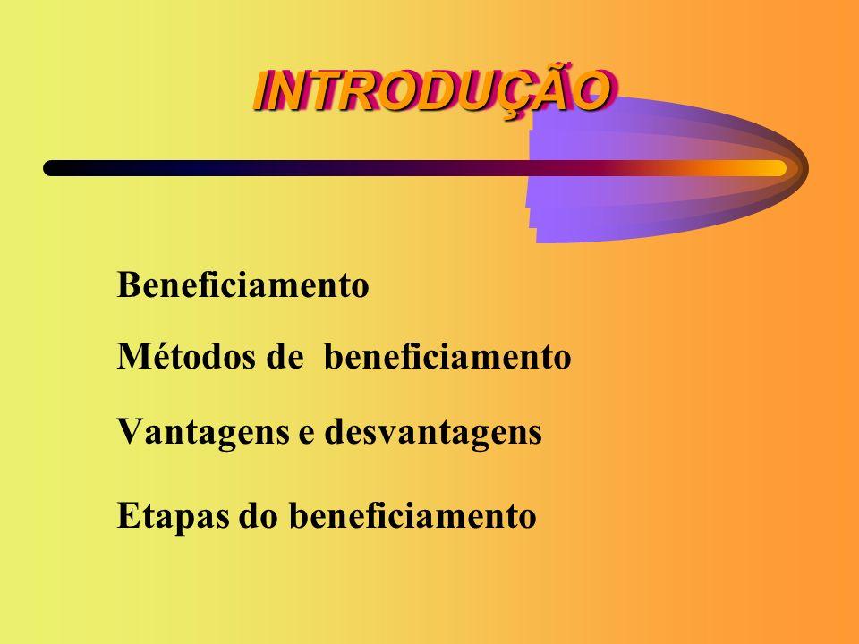 INTRODUÇÃOINTRODUÇÃO Beneficiamento Métodos de beneficiamento Vantagens e desvantagens Etapas do beneficiamento