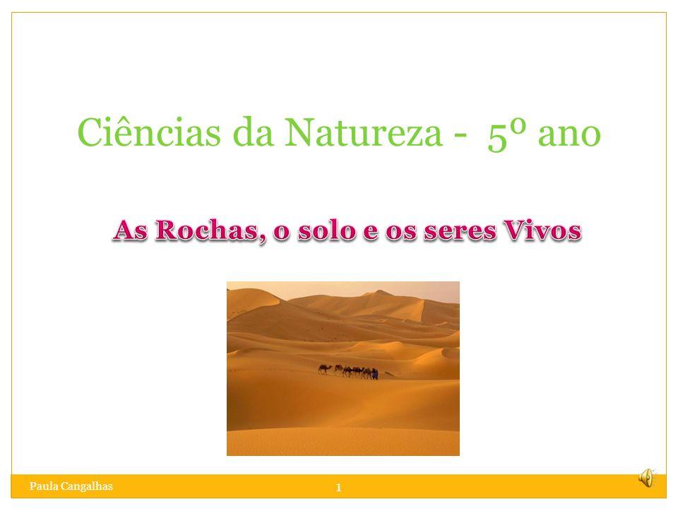 1 Ciências da Natureza - 5º ano Paula Cangalhas
