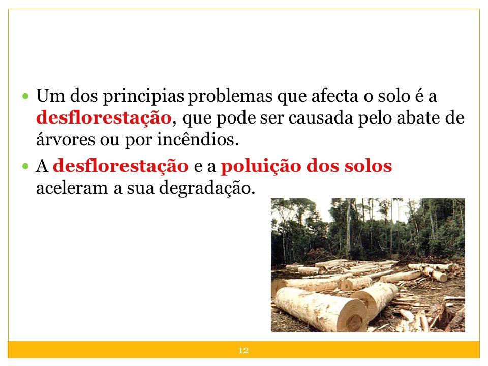 12 Um dos principias problemas que afecta o solo é a desflorestação, que pode ser causada pelo abate de árvores ou por incêndios. A desflorestação e a