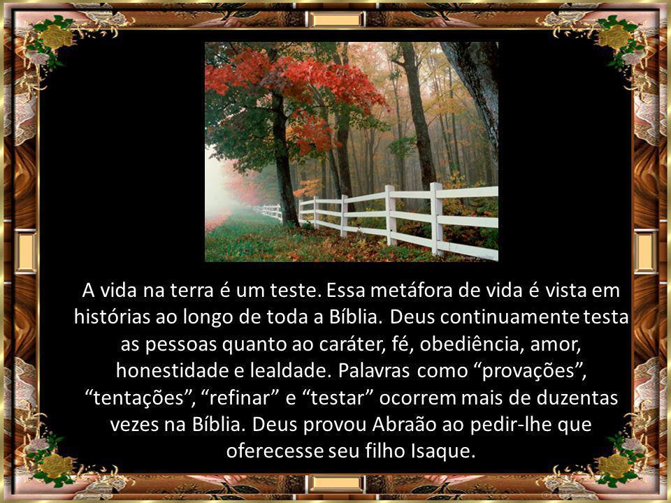 A vida na terra é um teste.Essa metáfora de vida é vista em histórias ao longo de toda a Bíblia.