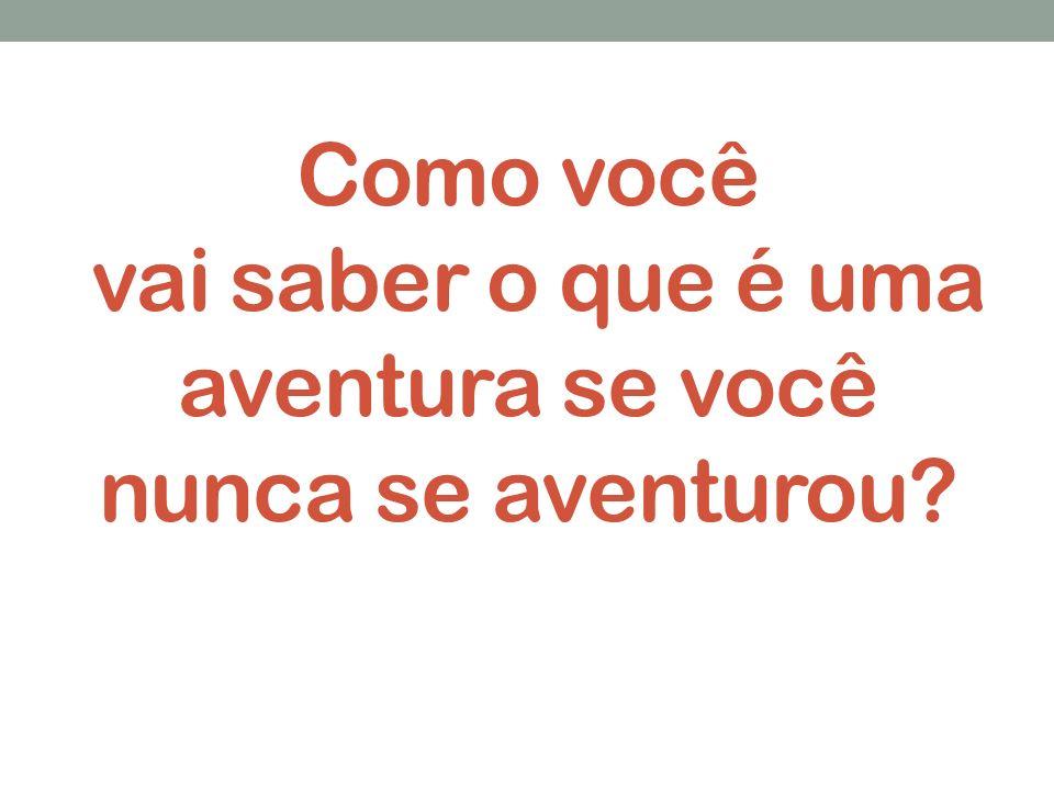 Vinicius de Moraes Roland – EUA 2008/9.E-mail: viniciusroland7@hotmail.com...