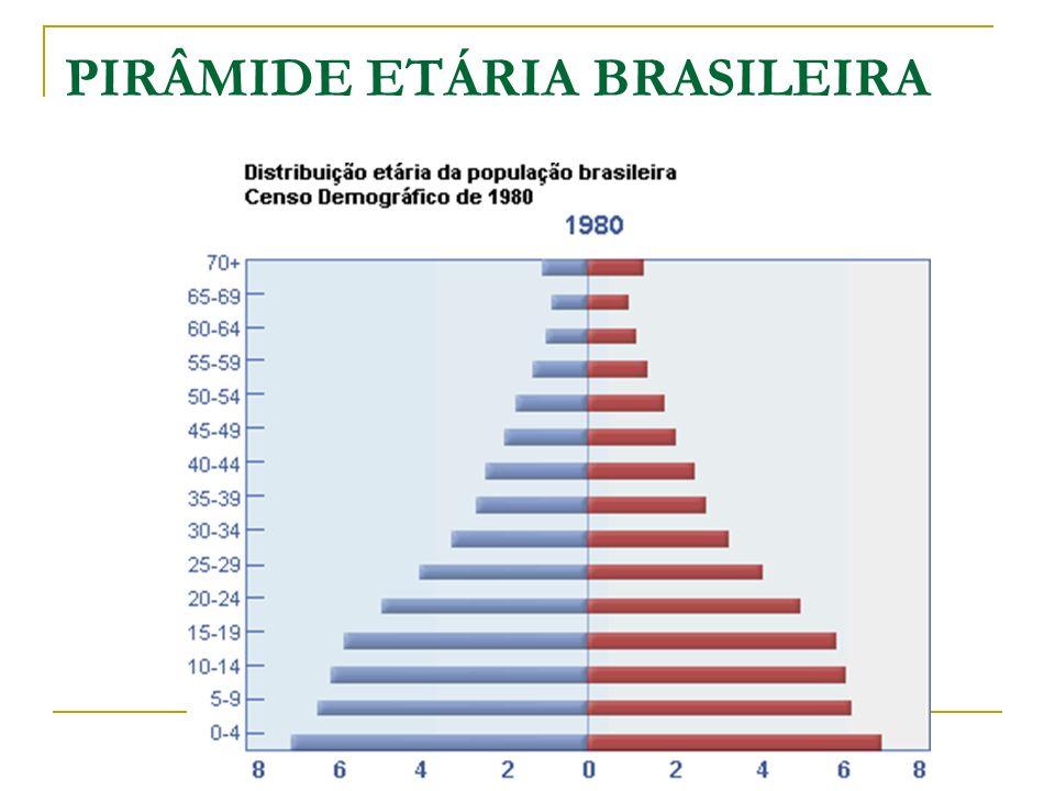 PIRÂMIDE ETÁRIA BRASILEIRA