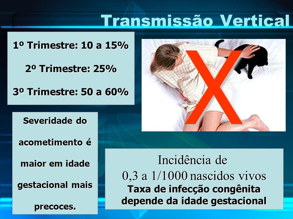 Transmissão Vertical 1º Trimestre: 10 a 15% 2º Trimestre: 25% 3º Trimestre: 50 a 60% Incidência de 0,3 a 1/1000 nascidos vivos Taxa de infecção congên