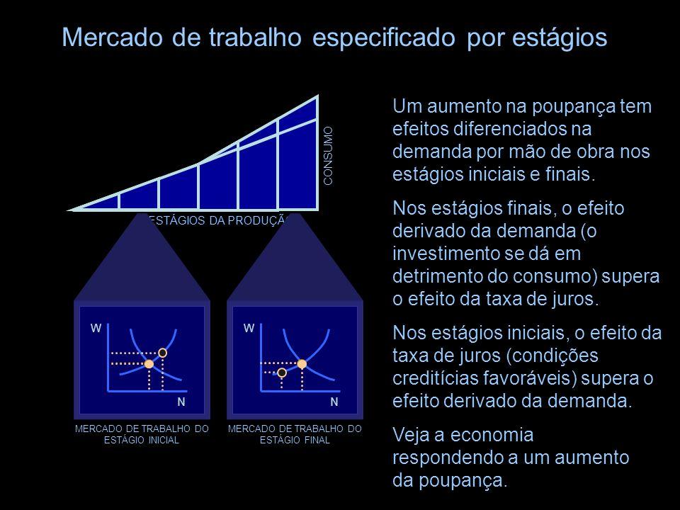 ESTÁGIOS DA PRODUÇÃO CONSUMO Mercado de trabalho especificado por estágios Enquanto que a maioria das teorias macroeconômicas lidam com o mercado de t