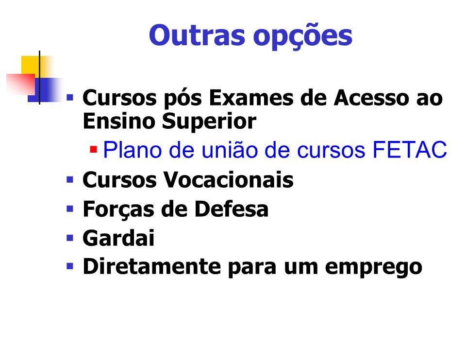 Outras opções Cursos pós Exames de Acesso ao Ensino Superior Plano de união de cursos FETAC Cursos Vocacionais Forças de Defesa Gardai Diretamente para um emprego