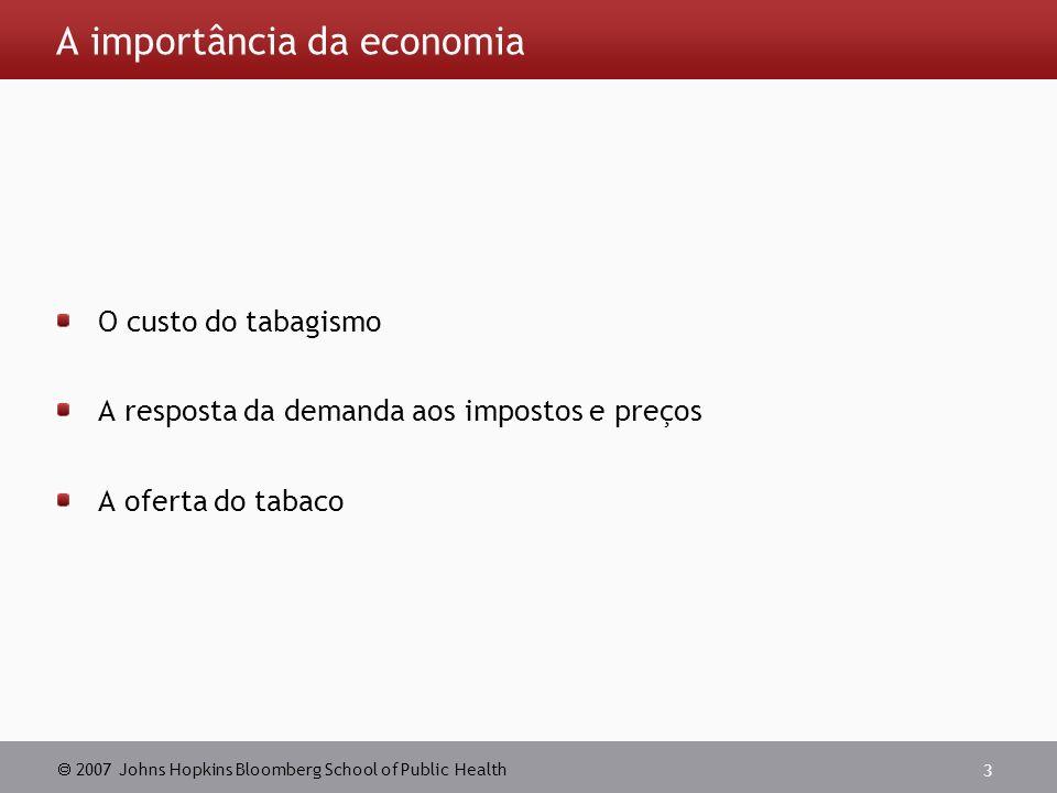 2007 Johns Hopkins Bloomberg School of Public Health 3 A importância da economia O custo do tabagismo A resposta da demanda aos impostos e preços A oferta do tabaco
