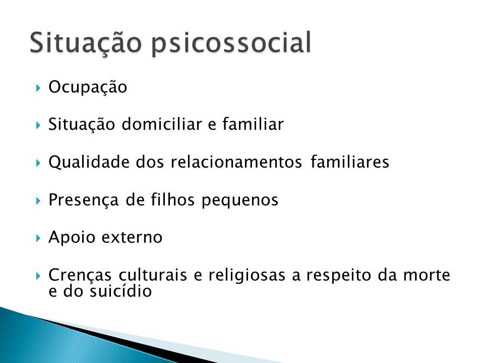 Ocupação Situação domiciliar e familiar Qualidade dos relacionamentos familiares Presença de filhos pequenos Apoio externo Crenças culturais e religio