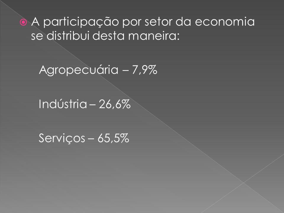 A participação por setor da economia se distribui desta maneira: Agropecuária – 7,9% Indústria – 26,6% Serviços – 65,5%