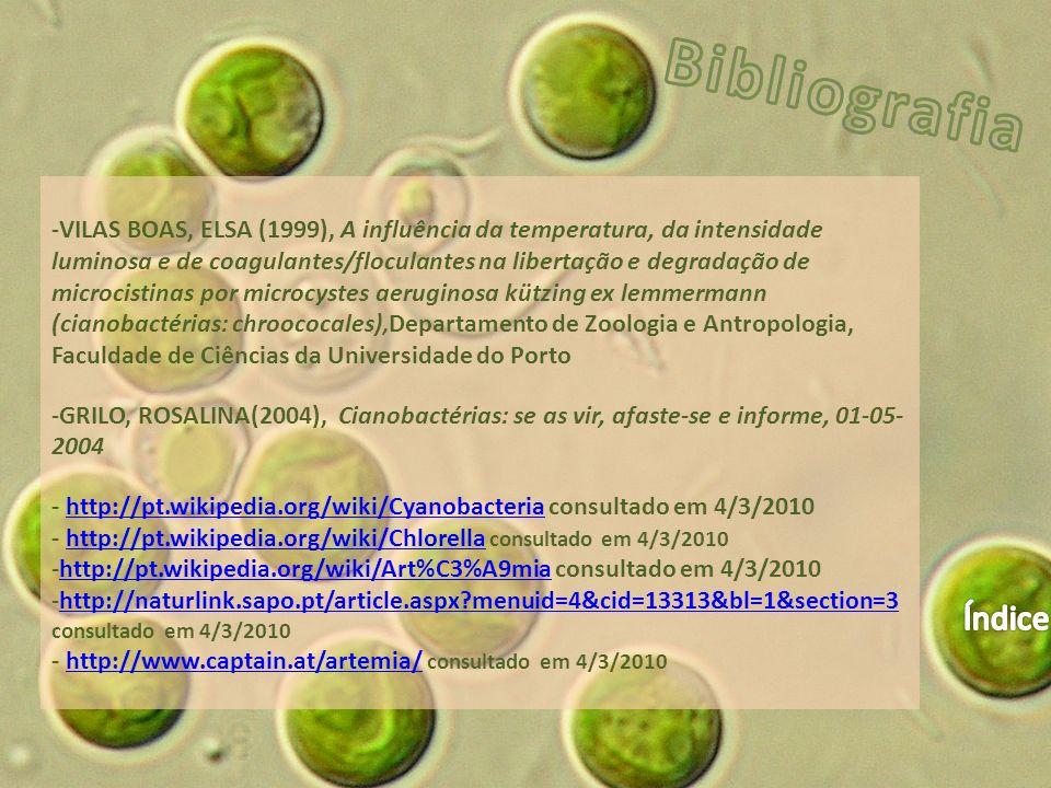 -VILAS BOAS, ELSA (1999), A influência da temperatura, da intensidade luminosa e de coagulantes/floculantes na libertação e degradação de microcistinas por microcystes aeruginosa kützing ex lemmermann (cianobactérias: chroococales), Departamento de Zoologia e Antropologia, Faculdade de Ciências da Universidade do Porto -GRILO, ROSALINA(2004), Cianobactérias: se as vir, afaste-se e informe, 01-05- 2004 - http://pt.wikipedia.org/wiki/Cyanobacteria consultado em 4/3/2010http://pt.wikipedia.org/wiki/Cyanobacteria - http://pt.wikipedia.org/wiki/Chlorella consultado em 4/3/2010http://pt.wikipedia.org/wiki/Chlorella -http://pt.wikipedia.org/wiki/Art%C3%A9mia consultado em 4/3/2010http://pt.wikipedia.org/wiki/Art%C3%A9mia -http://naturlink.sapo.pt/article.aspx?menuid=4&cid=13313&bl=1&section=3http://naturlink.sapo.pt/article.aspx?menuid=4&cid=13313&bl=1&section=3 consultado em 4/3/2010 - http://www.captain.at/artemia/ consultado em 4/3/2010http://www.captain.at/artemia/