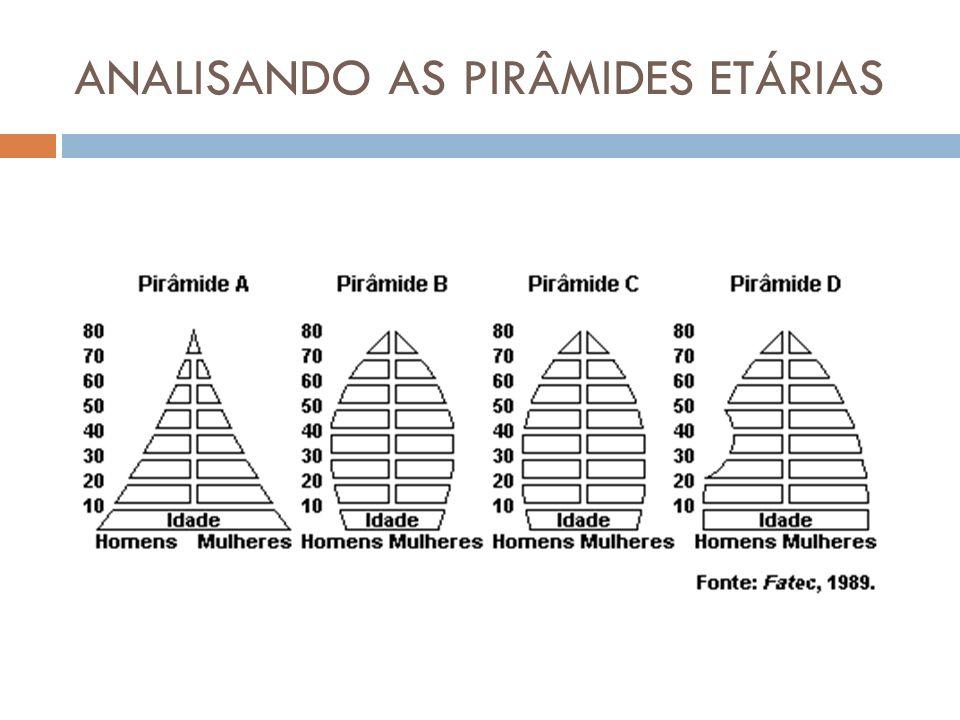 DISTRIBUIÇÃO DA POPULAÇÃO PELOS SETORES DA ECONOMIA