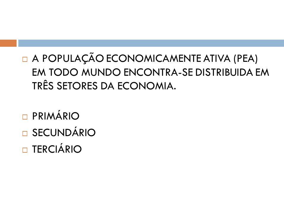 A POPULAÇÃO ECONOMICAMENTE ATIVA (PEA) EM TODO MUNDO ENCONTRA-SE DISTRIBUIDA EM TRÊS SETORES DA ECONOMIA.