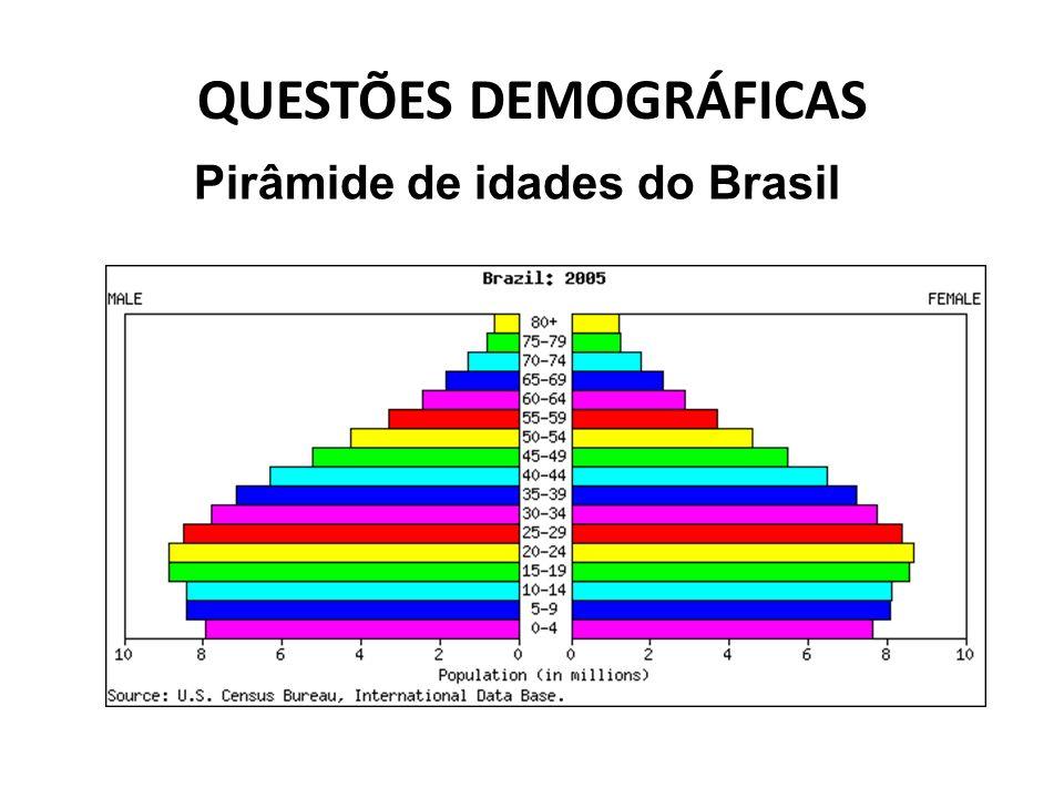 QUESTÕES DEMOGRÁFICAS Pirâmide de idades do Brasil