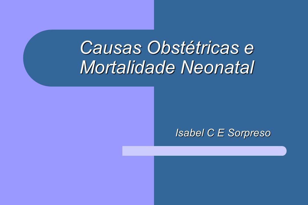 Causas Obstétricas e Mortalidade Neonatal Isabel C E Sorpreso