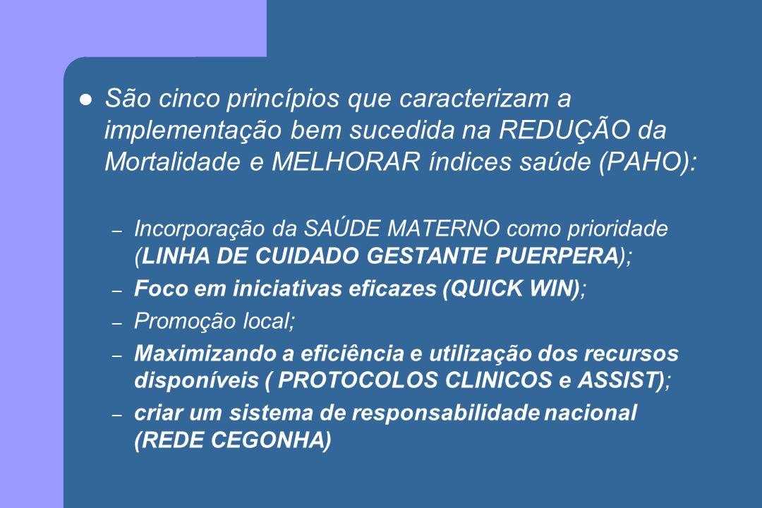 São cinco princípios que caracterizam a implementação bem sucedida na REDUÇÃO da Mortalidade e MELHORAR índices saúde (PAHO): – Incorporação da SAÚDE