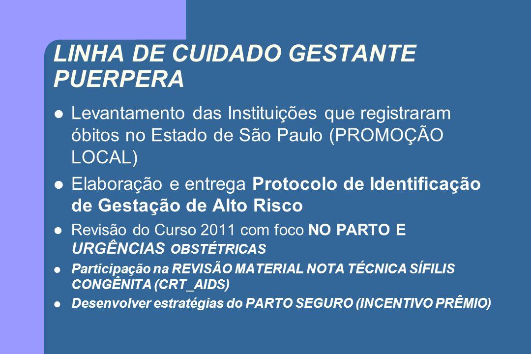 LINHA DE CUIDADO GESTANTE PUERPERA Levantamento das Instituições que registraram óbitos no Estado de São Paulo (PROMOÇÃO LOCAL) Elaboração e entrega P