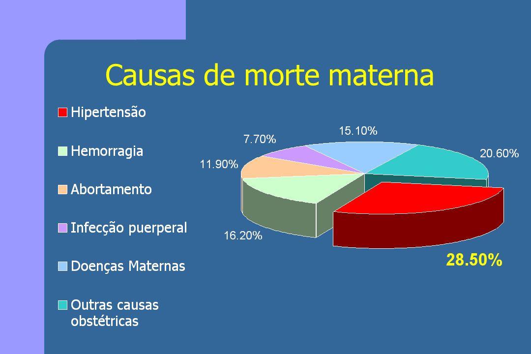 Causas de morte materna
