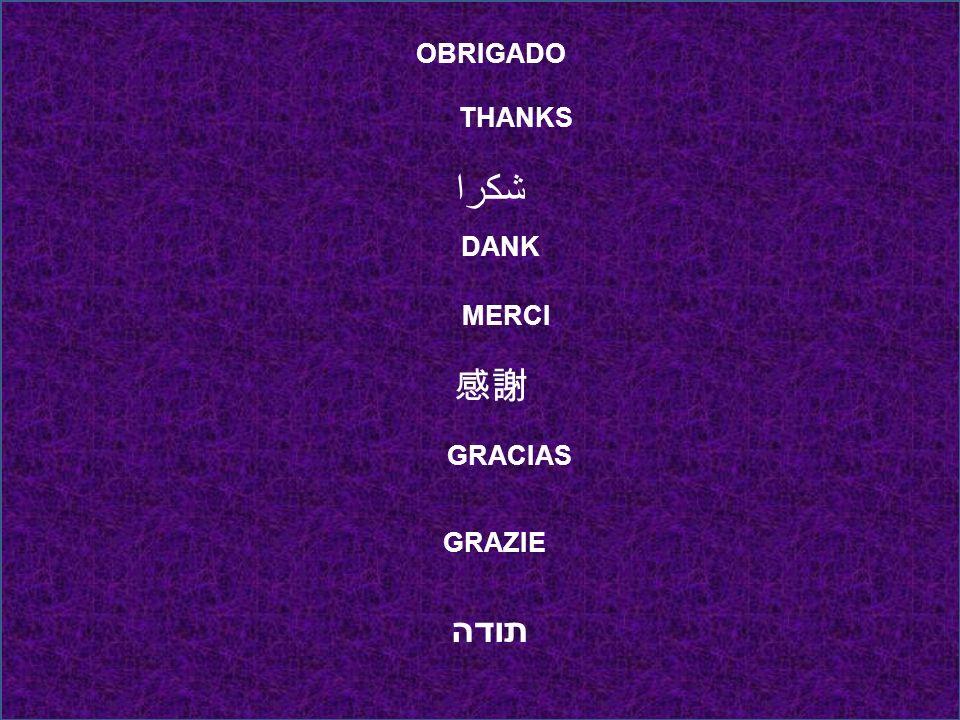 OBRIGADO THANKS شكرا DANK MERCI GRACIAS GRAZIE תודה