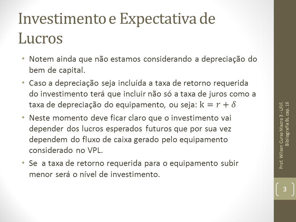 Investimento e Expectativa de Lucros Prof. Wilson Curso Macro 3 - UFJF. Bibliografia BL cap. 16 3