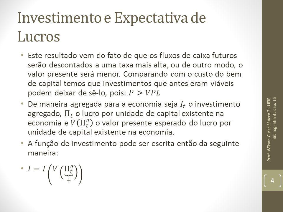 Investimento e Expectativa de Lucros Prof. Wilson Curso Macro 3 - UFJF. Bibliografia BL cap. 16 4