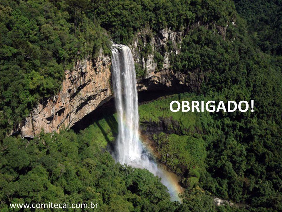 OBRIGADO! www.comitecai.com.br