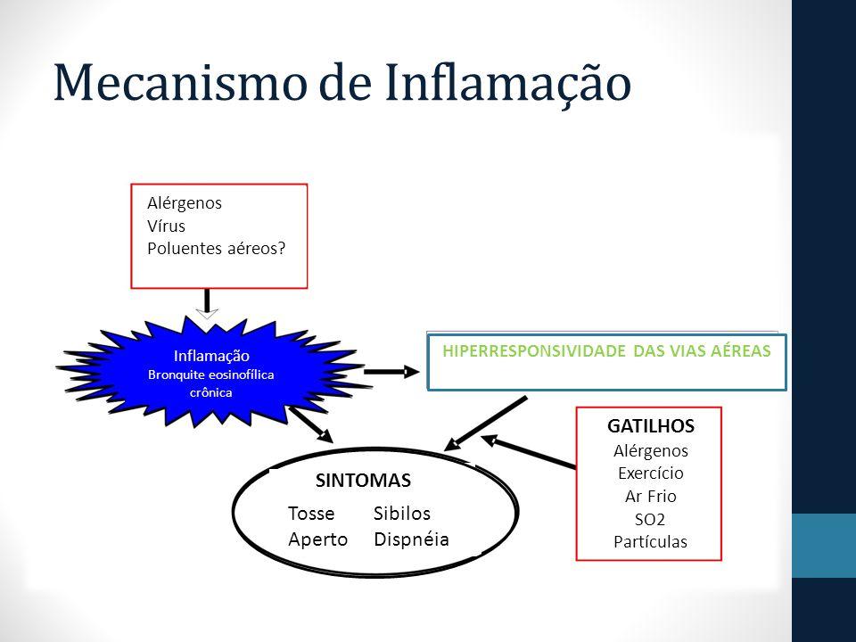 Mecanismo de Inflamação Alérgenos Vírus Poluentes aéreos.