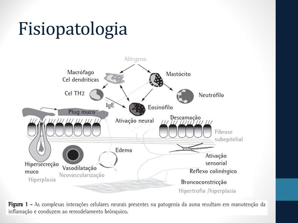 hipertrofia e hiperplasia do músculo liso elevação no número de células caliciformes aumento das glândulas submucosas alteração no depósito e degradação dos componentes da matriz extracelular = Remodelamento que interfere na arquitetura da via aérea, levando à irreversibilidade de obstrução em alguns pacientes