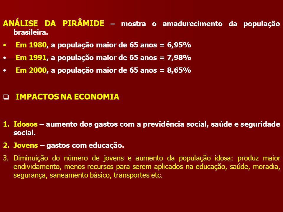 ANÁLISE DA PIRÂMIDE – mostra o amadurecimento da população brasileira. Em 1980, a população maior de 65 anos = 6,95% Em 1991, a população maior de 65