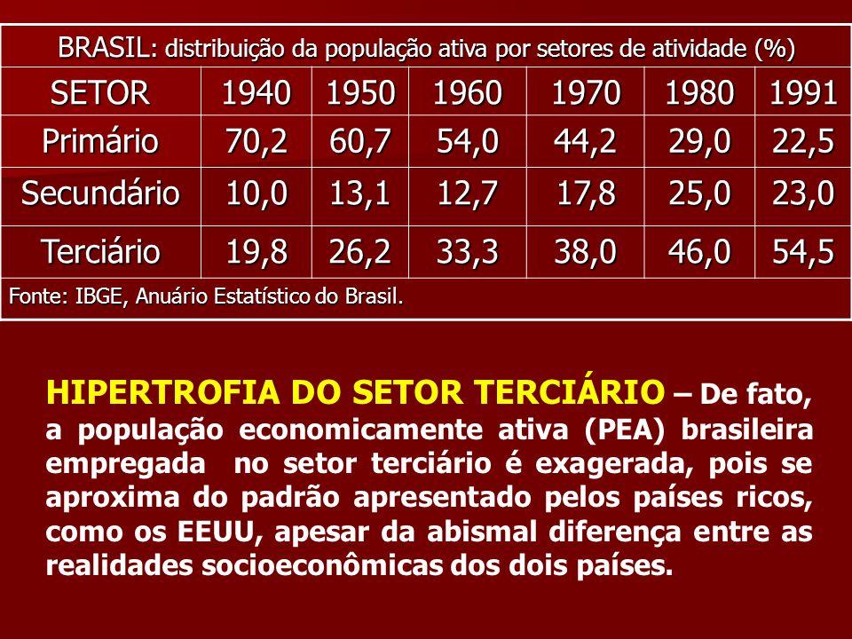 BRASIL : distribuição da população ativa por setores de atividade (%) SETOR194019501960197019801991 Primário70,260,754,044,229,022,5 Secundário10,013,