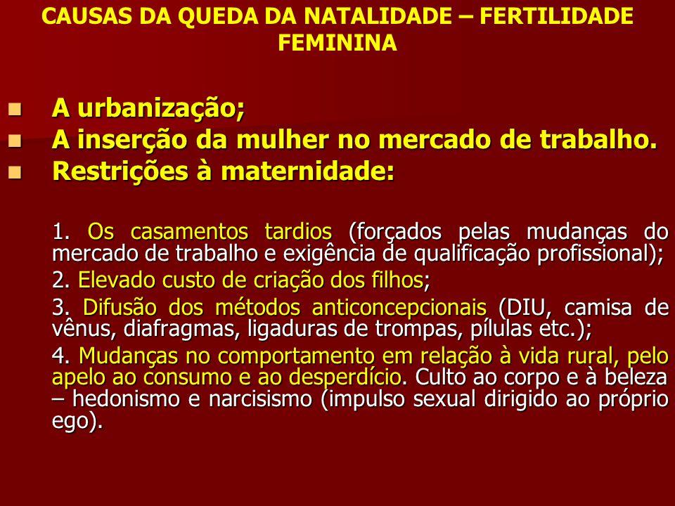 CAUSAS DA QUEDA DA NATALIDADE – FERTILIDADE FEMININA A urbanização; A urbanização; A inserção da mulher no mercado de trabalho. A inserção da mulher n