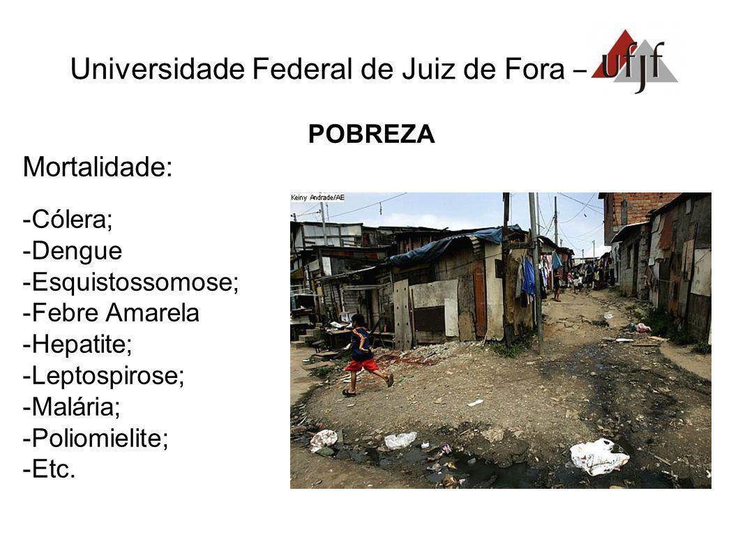 Universidade Federal de Juiz de Fora – POBREZA Mortalidade: Cólera; Dengue Esquistossomose; Febre Amarela Hepatite; Leptospirose; Malária; Poliomielit