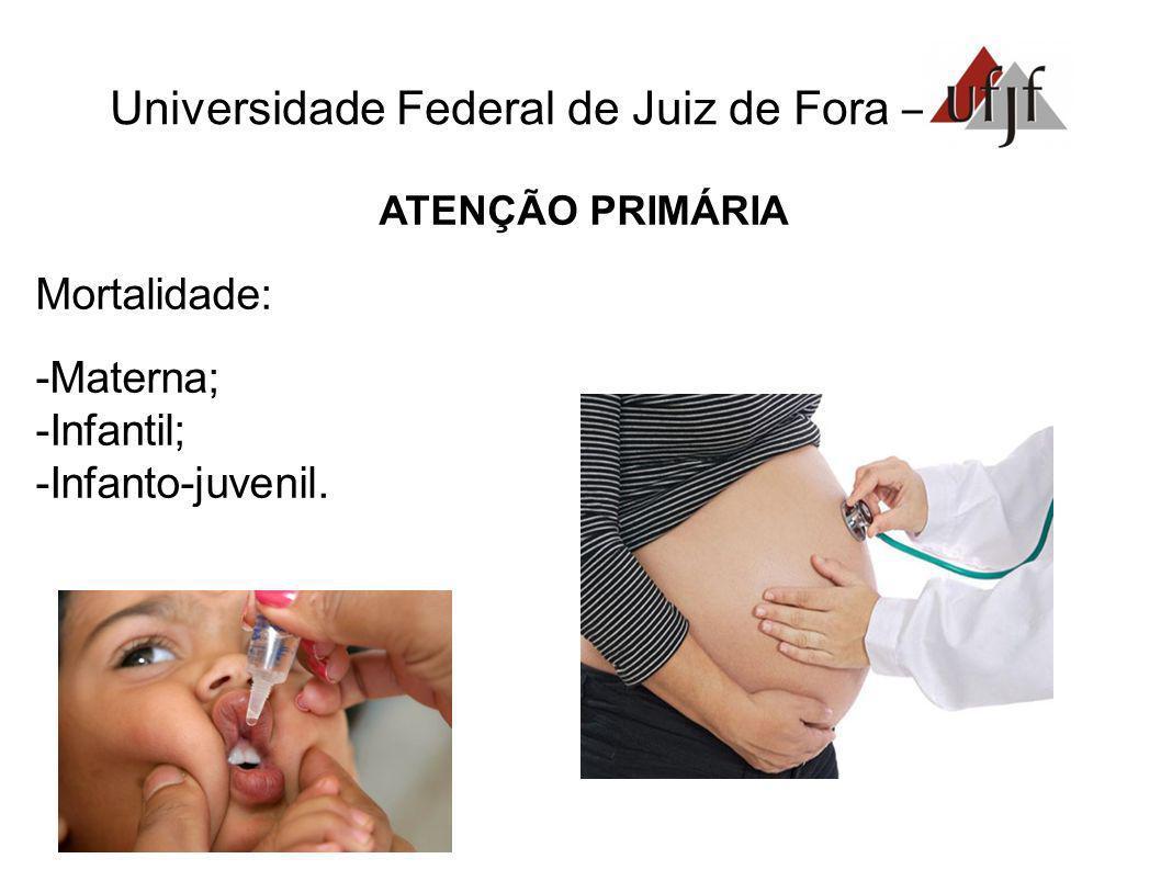 Universidade Federal de Juiz de Fora – ATENÇÃO PRIMÁRIA Mortalidade: Materna; Infantil; Infanto-juvenil.