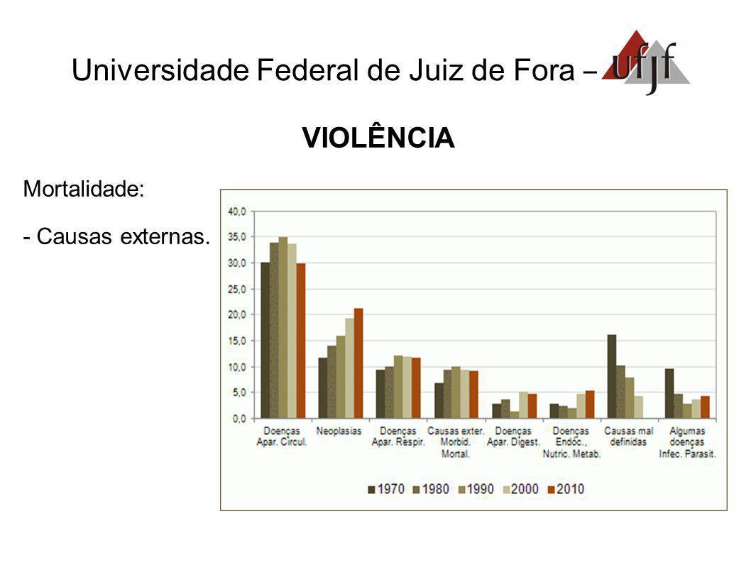 Universidade Federal de Juiz de Fora – VIOLÊNCIA Mortalidade: - Causas externas.