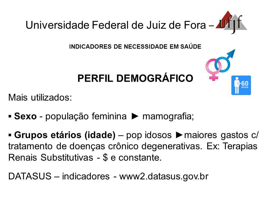 Universidade Federal de Juiz de Fora – INDICADORES DE NECESSIDADE EM SAÚDE PERFIL DEMOGRÁFICO Mais utilizados: Sexo - população feminina mamografia; G