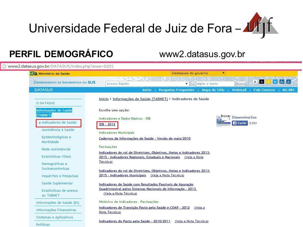 Universidade Federal de Juiz de Fora – PERFIL DEMOGRÁFICO www2.datasus.gov.br