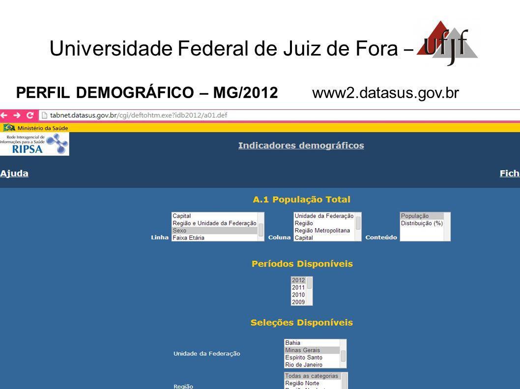 Universidade Federal de Juiz de Fora – PERFIL DEMOGRÁFICO – MG/2012 www2.datasus.gov.br