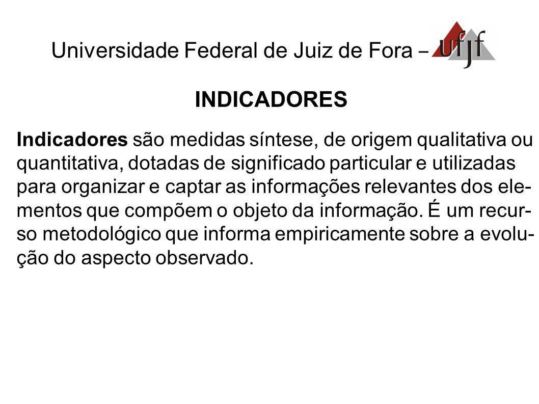 Universidade Federal de Juiz de Fora – INDICADORES Indicadores são medidas síntese, de origem qualitativa ou quantitativa, dotadas de significado part