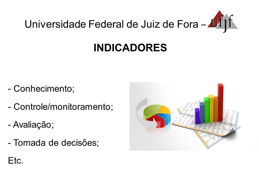 Universidade Federal de Juiz de Fora – INDICADORES - Conhecimento; - Controle/monitoramento; - Avaliação; - Tomada de decisões; Etc.