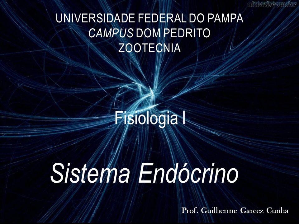 Sistema Endócrino UNIVERSIDADE FEDERAL DO PAMPA CAMPUS DOM PEDRITO ZOOTECNIA Prof. Guilherme Garcez Cunha Fisiologia I