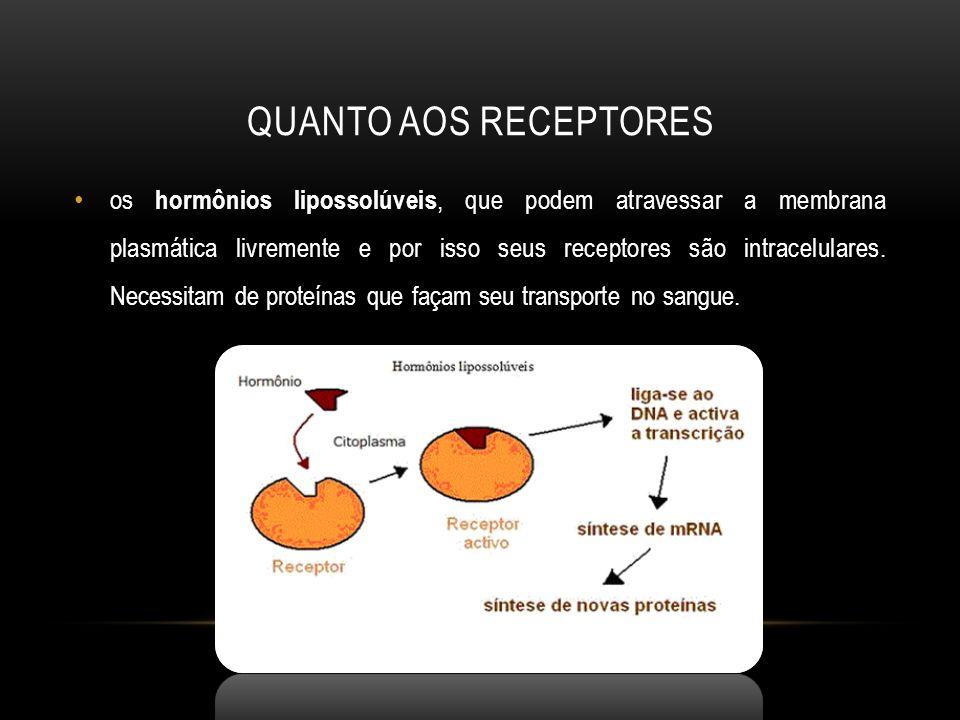 QUANTO AOS RECEPTORES os hormônios lipossolúveis, que podem atravessar a membrana plasmática livremente e por isso seus receptores são intracelulares.