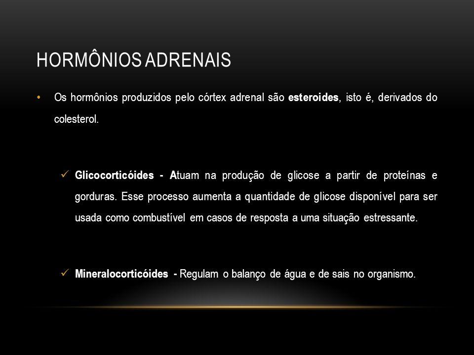HORMÔNIOS ADRENAIS Os hormônios produzidos pelo córtex adrenal são esteroides, isto é, derivados do colesterol. Glicocorticóides - A tuam na produção