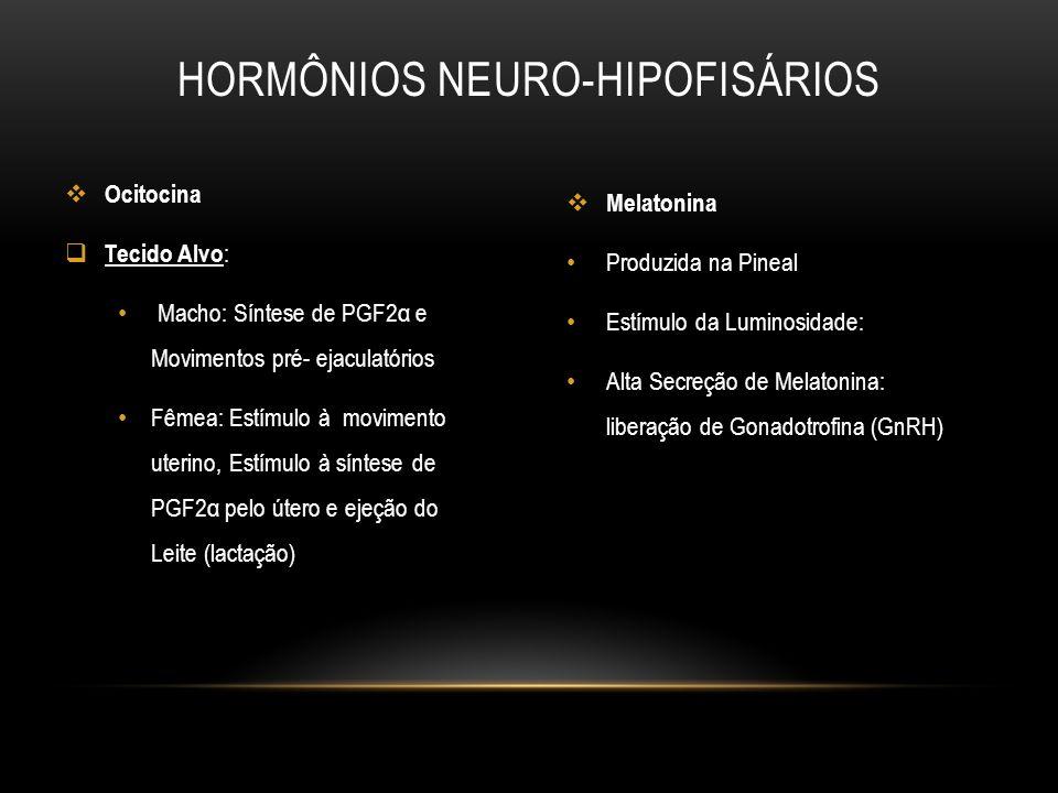 Melatonina Produzida na Pineal Estímulo da Luminosidade: Alta Secreção de Melatonina: liberação de Gonadotrofina (GnRH) HORMÔNIOS NEURO-HIPOFISÁRIOS O