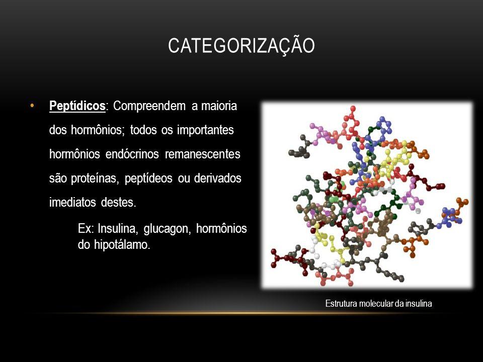 Peptídicos : Compreendem a maioria dos hormônios; todos os importantes hormônios endócrinos remanescentes são proteínas, peptídeos ou derivados imedia