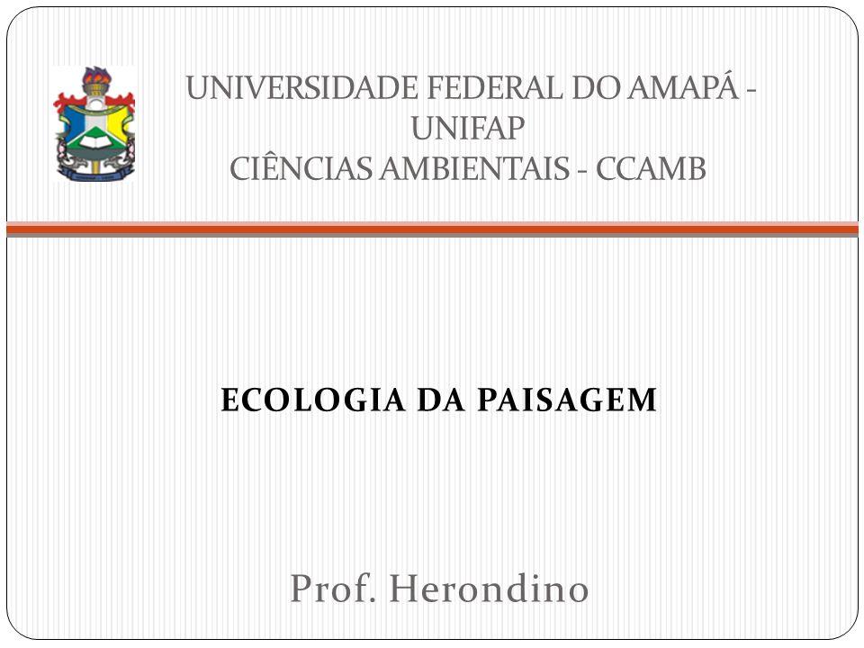 UNIVERSIDADE FEDERAL DO AMAPÁ - UNIFAP CIÊNCIAS AMBIENTAIS - CCAMB ECOLOGIA DA PAISAGEM Prof. Herondino