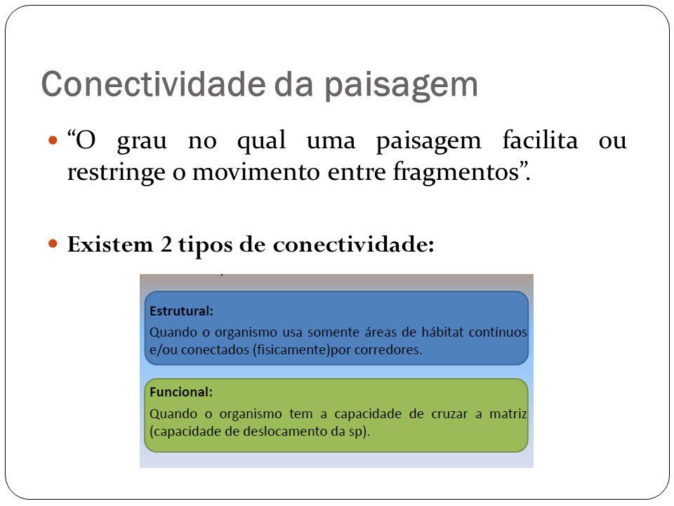 Conectividade da paisagem O grau no qual uma paisagem facilita ou restringe o movimento entre fragmentos. Existem 2 tipos de conectividade: